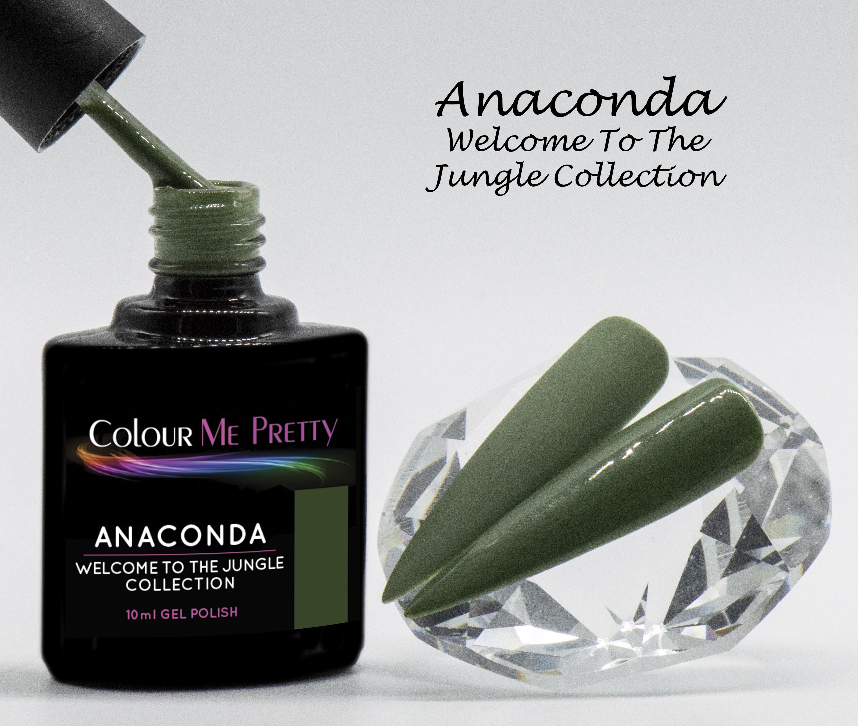 Welcome Anaconda