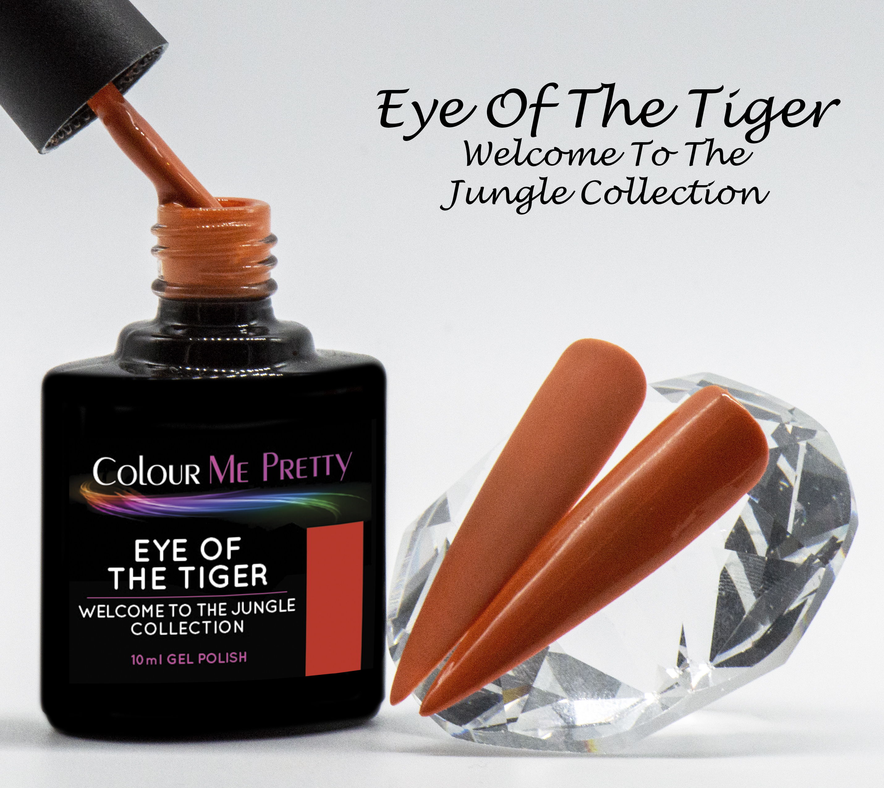 Welcome Eye Of The Tiger